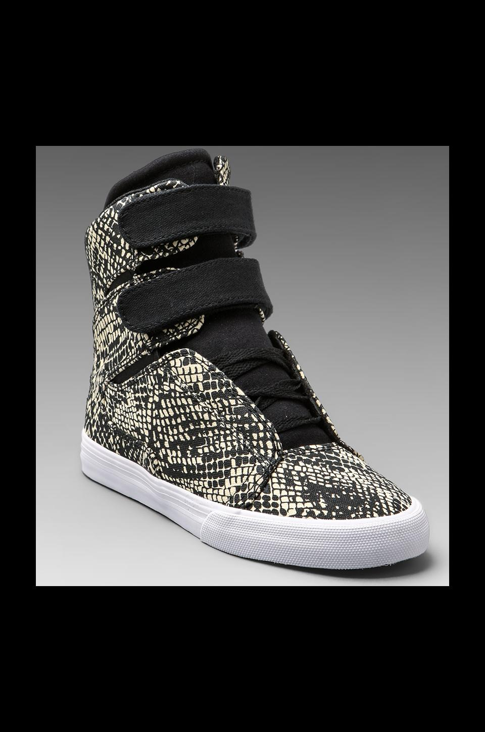 Supra Society Sneaker in Black Snake