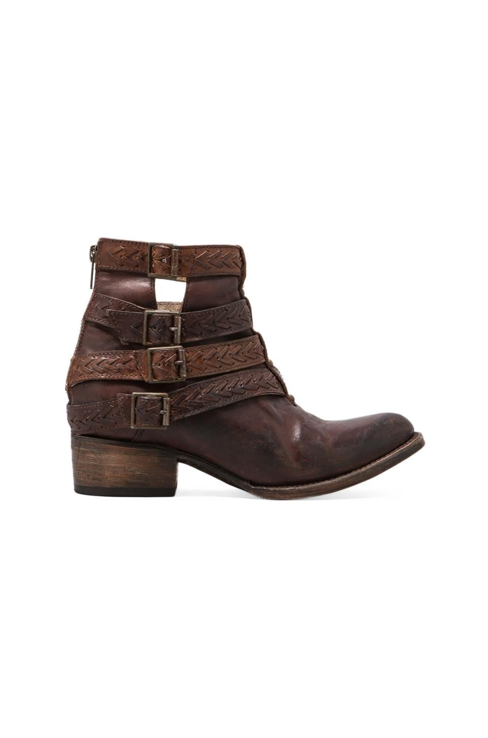 Steven Roper Boot in Brown Leather