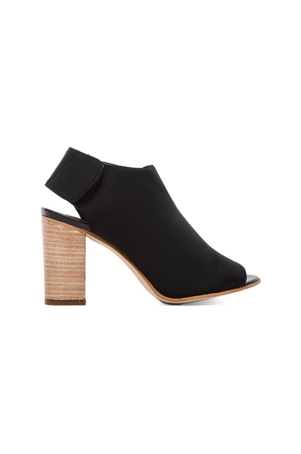 Steven Sassi Bootie in Black