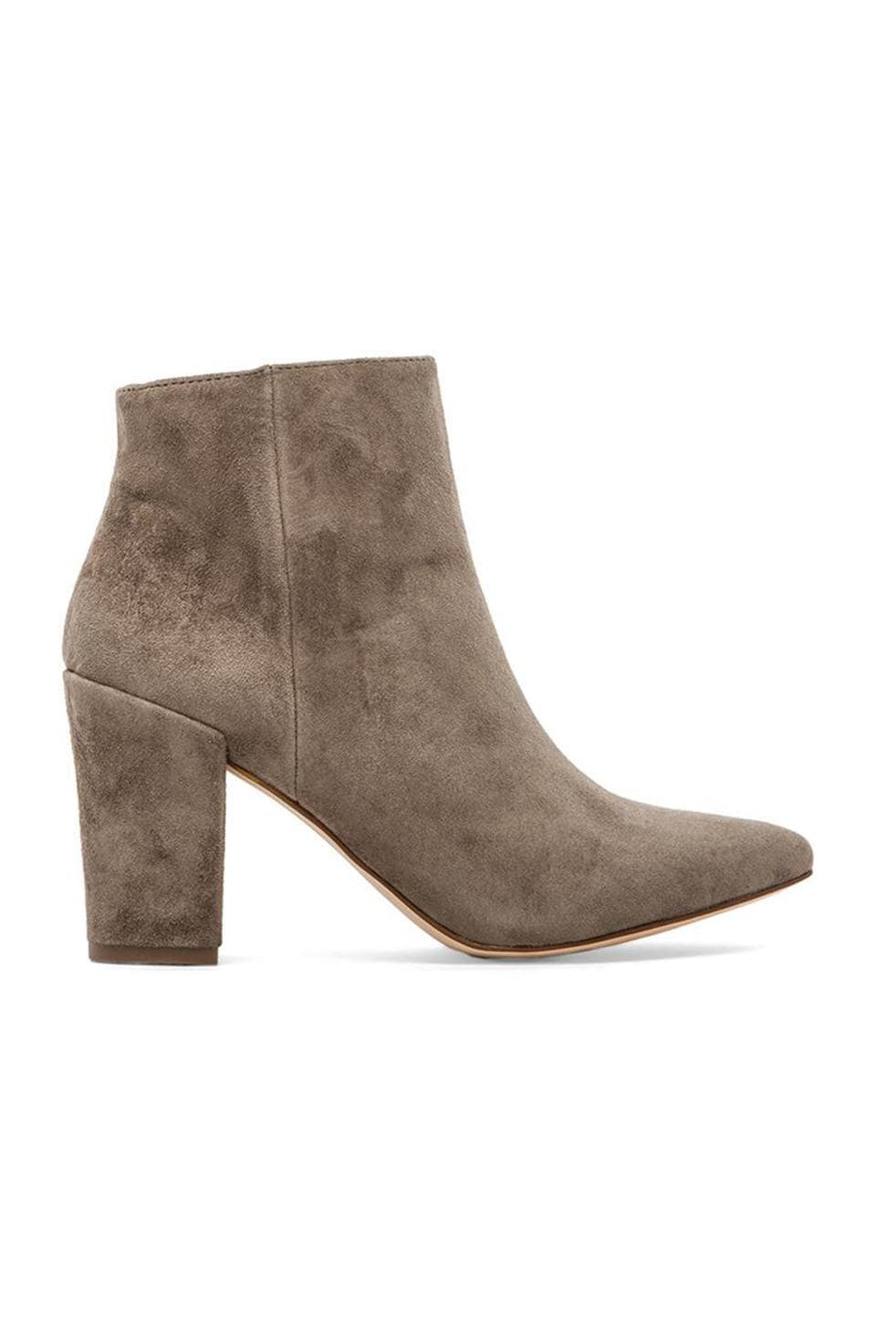 Steven Lidiaa Bootie in Taupe Suede