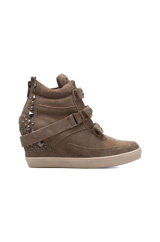 Steven Jazmen Sneaker Wedge in Taupe Suede
