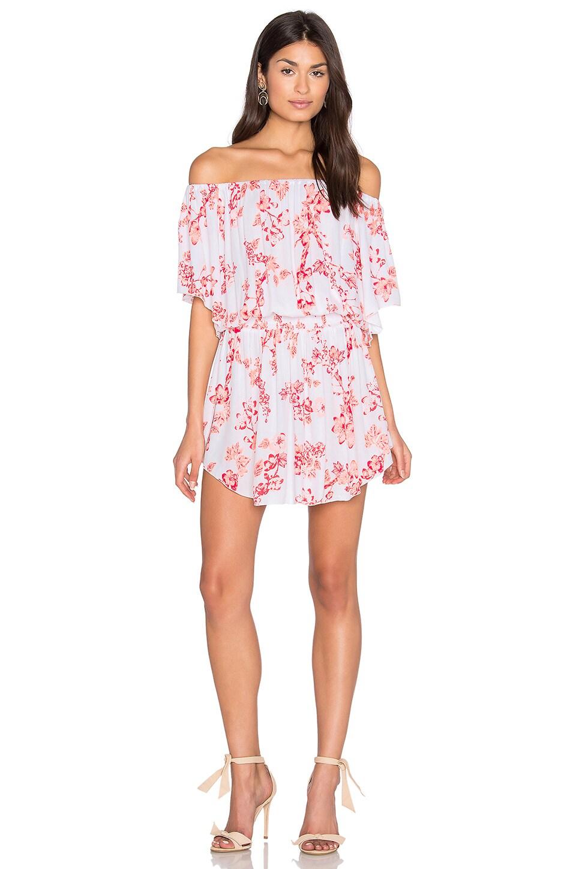 Steele Ember Dress in Cherry Primrose