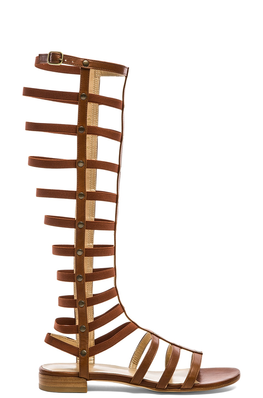 Stuart Weitzman Gladiator Sandal in Saddle