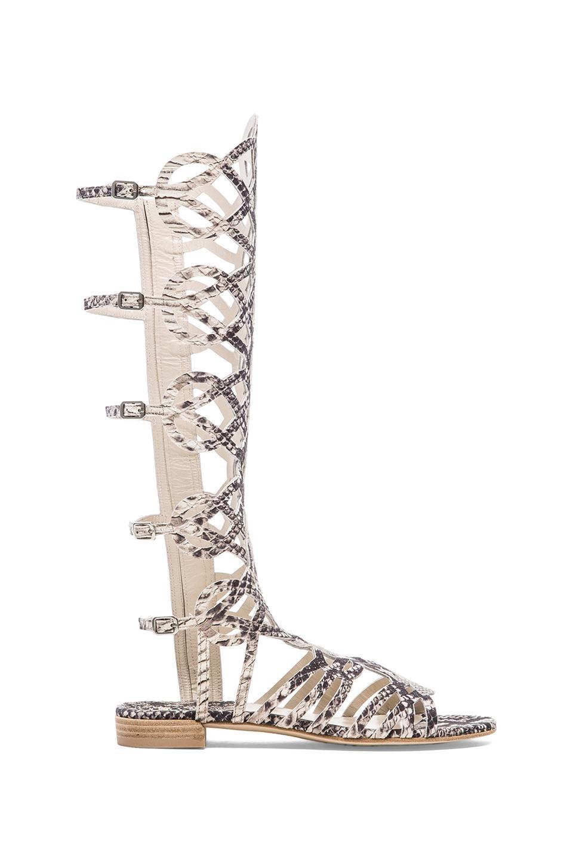 Stuart Weitzman Aphrodite Sandal in Natural Snake