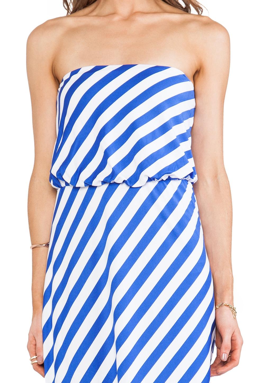 "Susana Monaco Stripe Supplex Tube 40"" Dress in Topaz/Sugar"