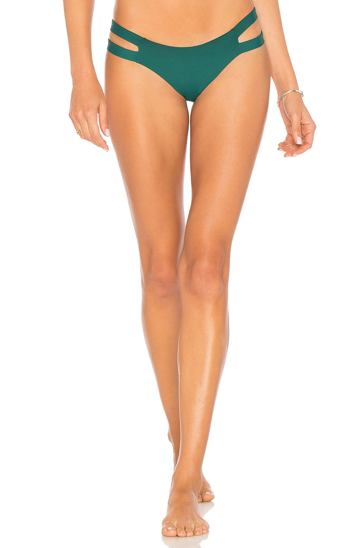 TAVIK Swimwear Chloe Bikini Bottom in Storm Green