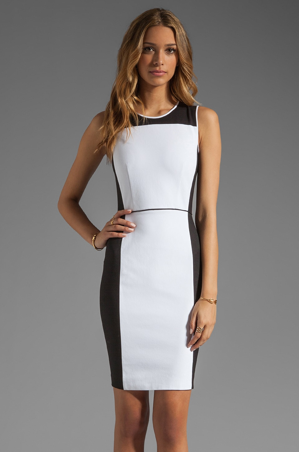 Theory Elite Nyasha Dress in White/Black