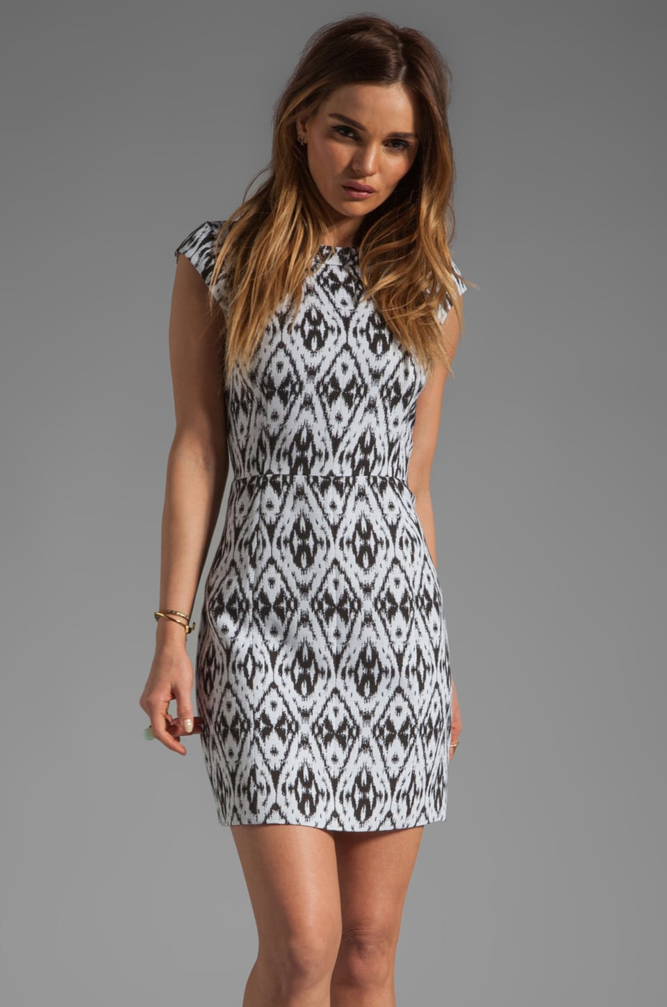 Theory Andes Orinthia Graphic Jacquard Dress in White/Black