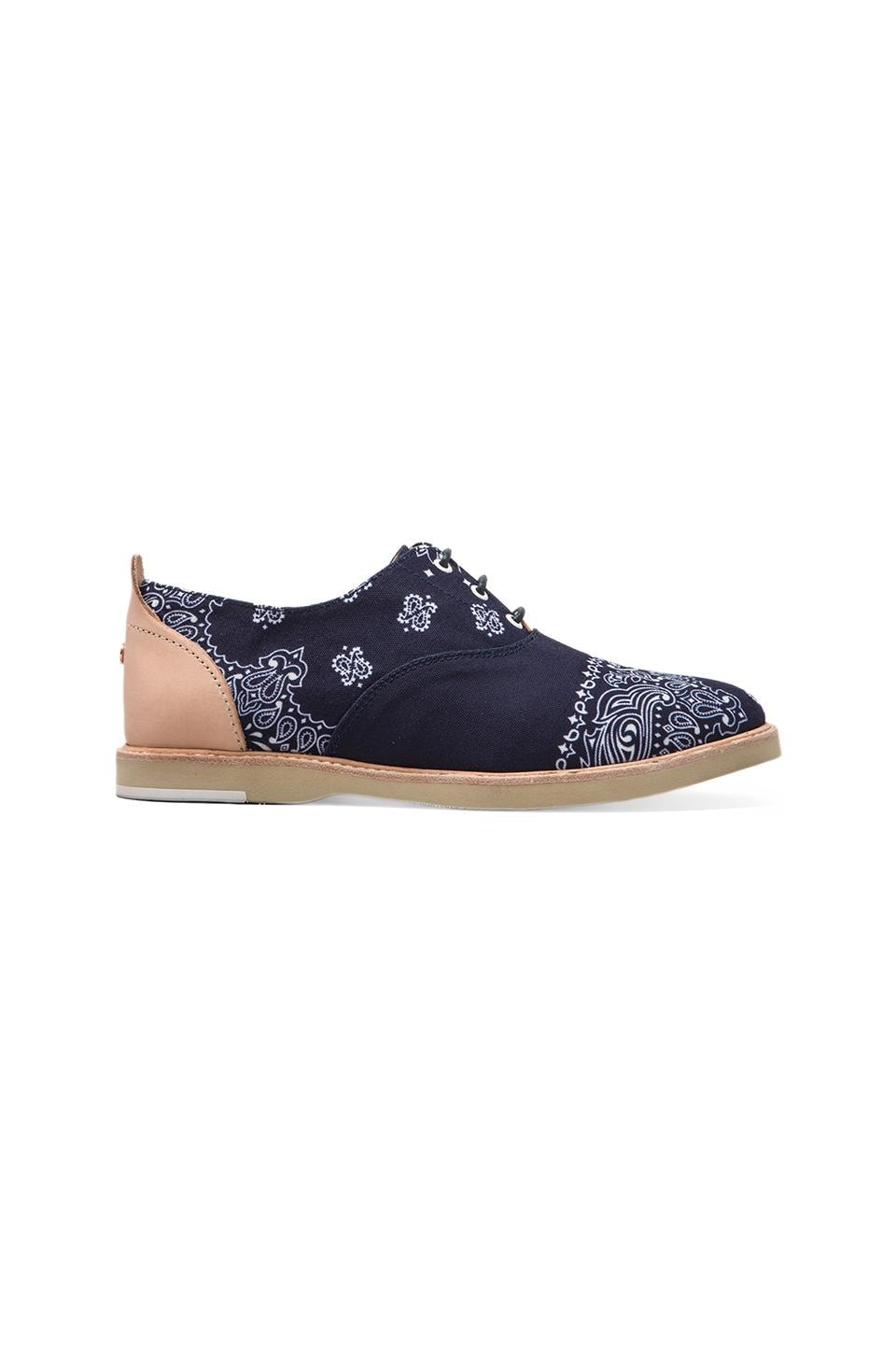 Thorocraft Hampton in Bandana Navy