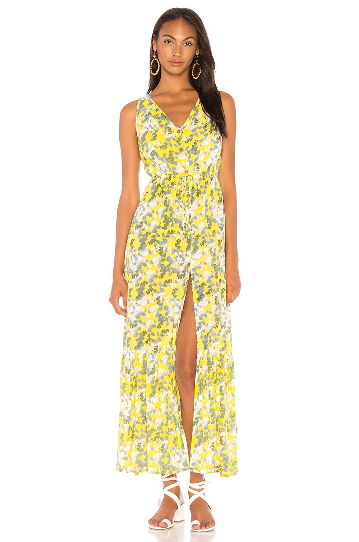 Jackson Hole Dress