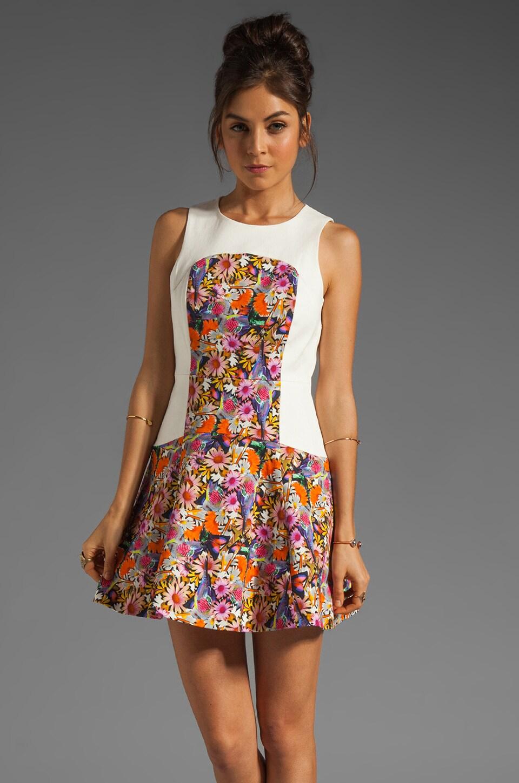 Tibi Potpourri Dress in Orange Multi