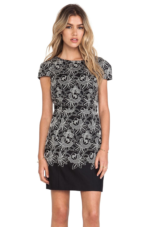 Tibi Embroidery Dress in Black Multi