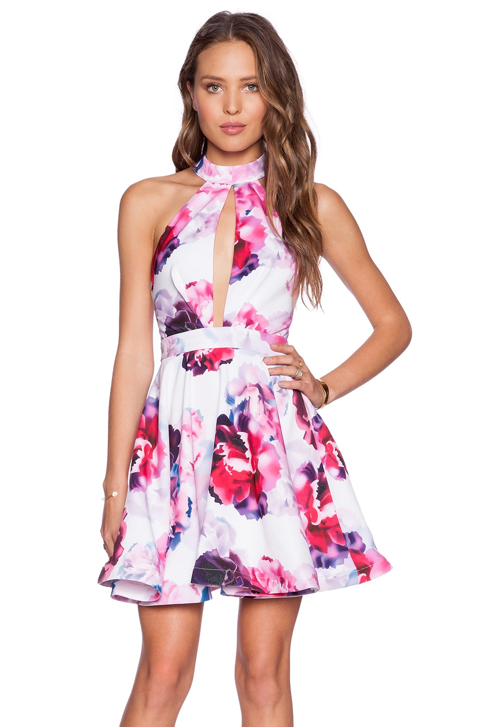 tiger Mist Raspberry Blossom Skater Dress in Floral