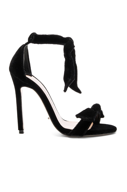 Tony Bianco Kiely Heel in Black Velvet
