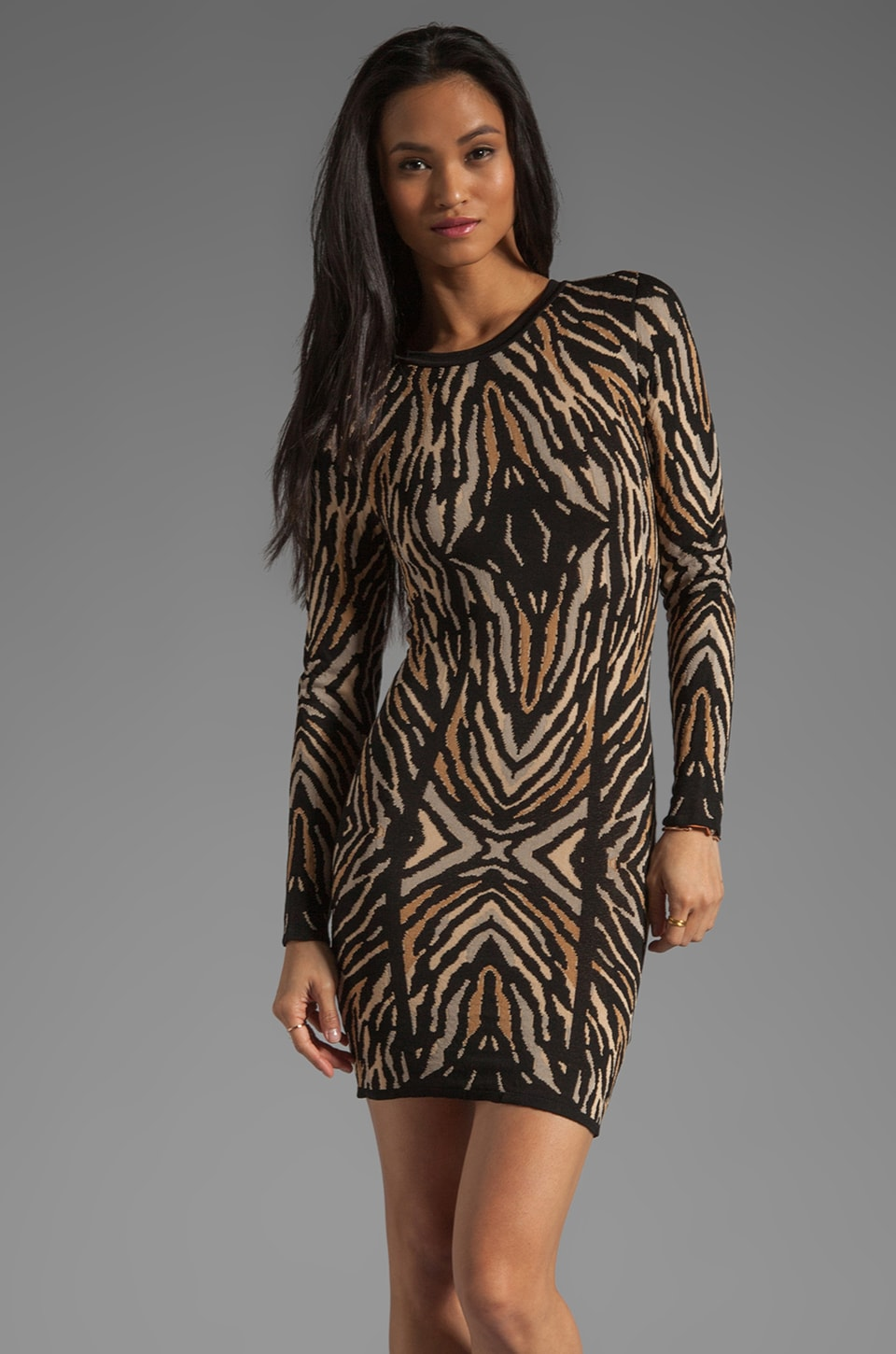 Torn by Ronny Kobo Emma Long Sleeve Zebra Jacquard Dress in Black/Natural