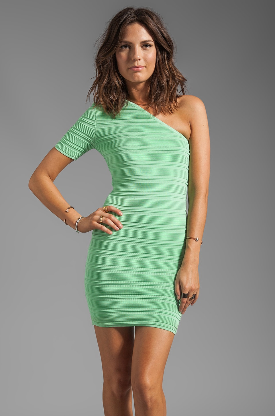 Torn by Ronny Kobo Kat Dress in Mint