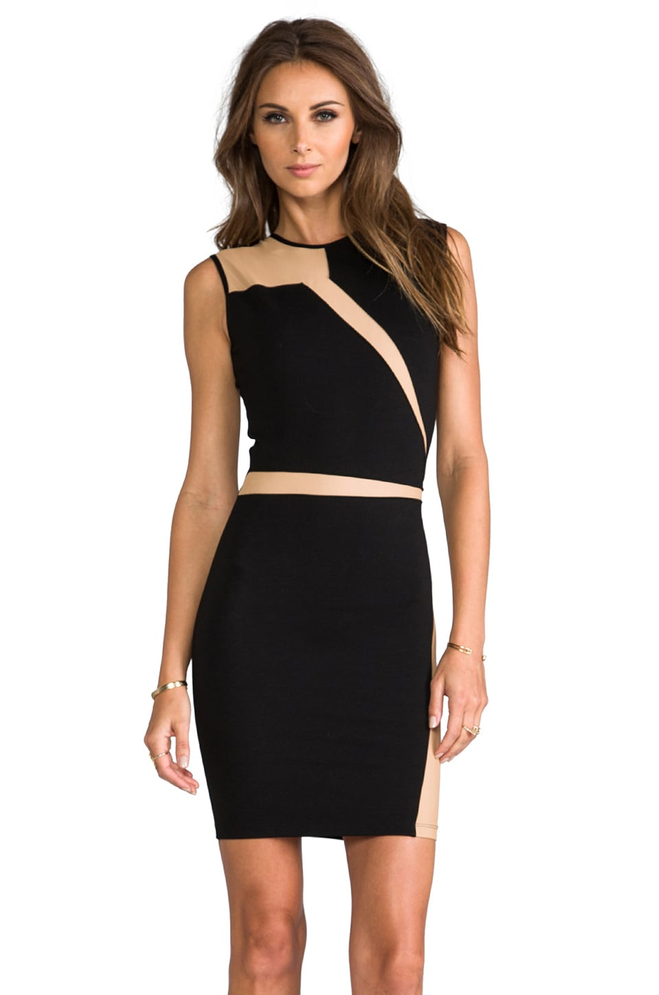 Torn by Ronny Kobo Adina Mesh Dress in Black