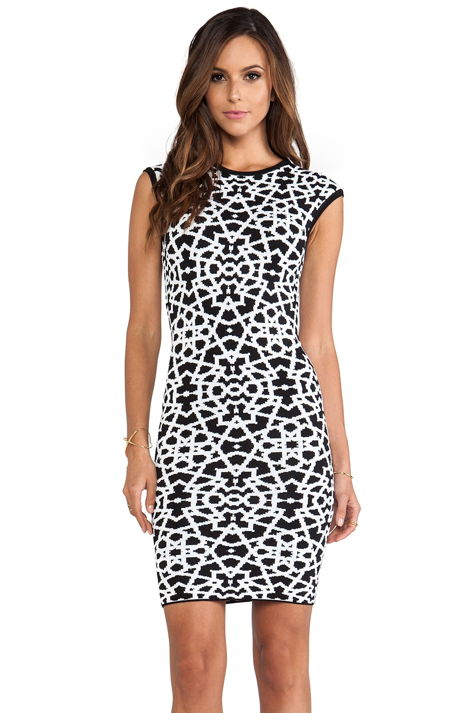 Torn by Ronny Kobo Victoria Dress in Black & White