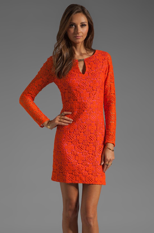 Trina Turk Boardwalk Lace Crandon Dress in Sunset