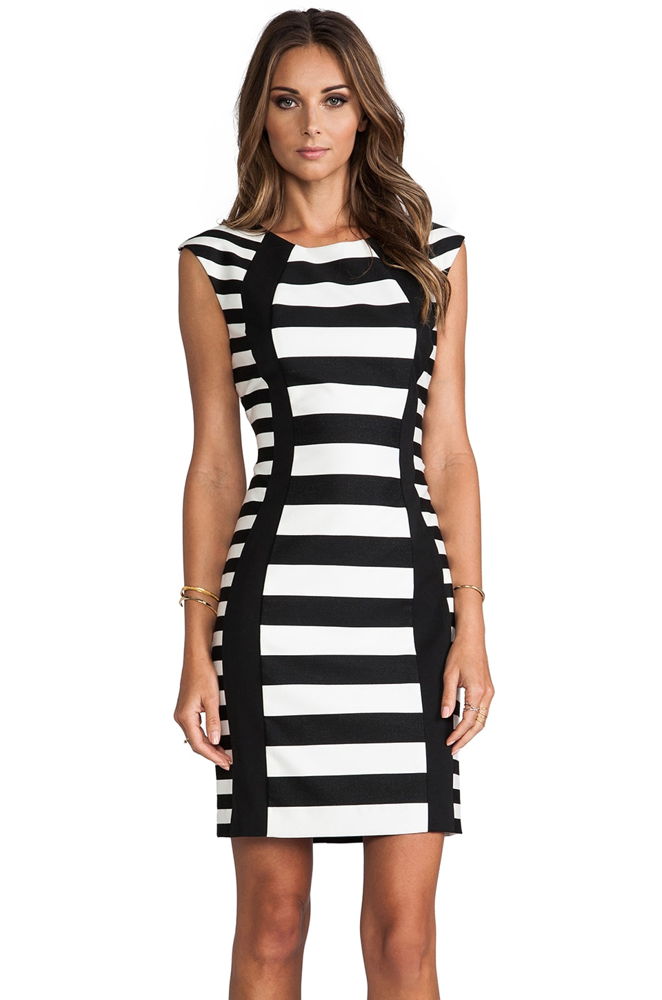 Trina Turk Phlox Dress in Black Stripe