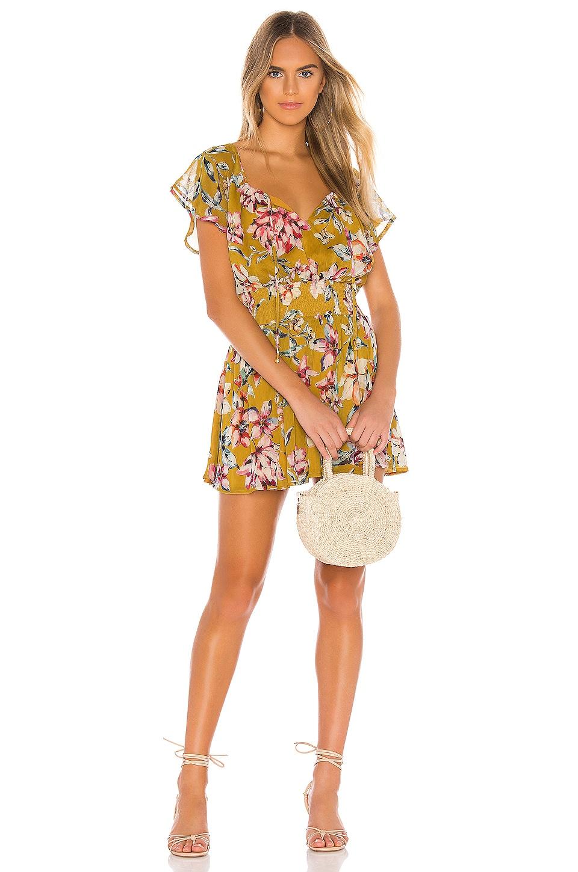 Tularosa HILLARY ドレス