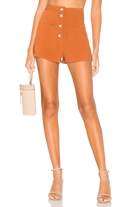 Tularosa Tate Shorts in Rust