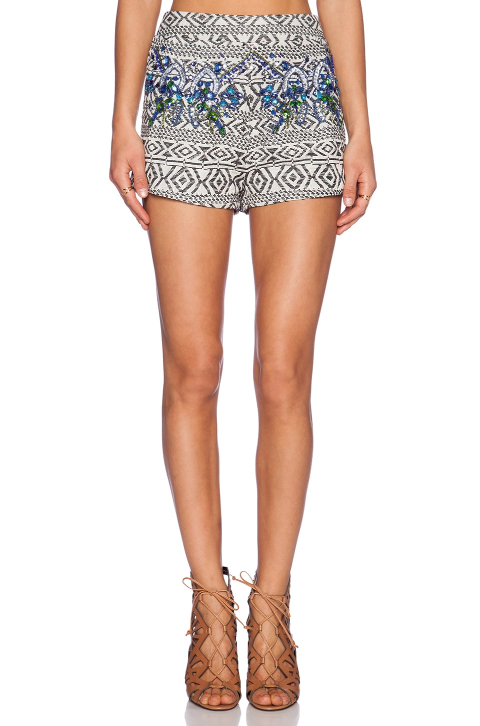 Tularosa Life of the Party Shorts in Variation Stripe