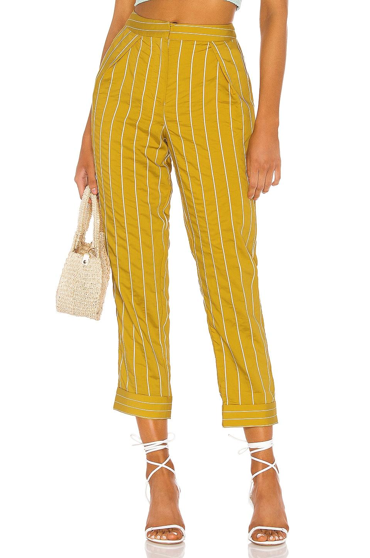 Tularosa Aimee Pant in Mustard Yellow