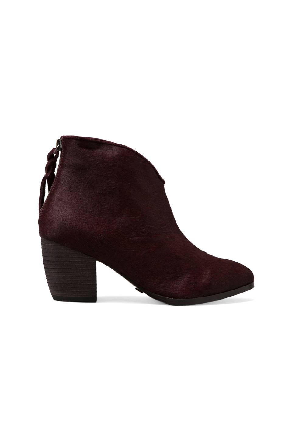 Twelfth Street By Cynthia Vincent Dane Hair on Calf Bootie in Bordeaux