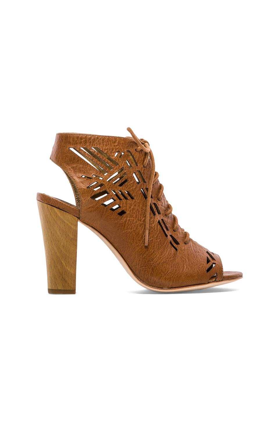 Twelfth Street By Cynthia Vincent Sivan Laser Cut Lace Up Suede Sandal in Cognac