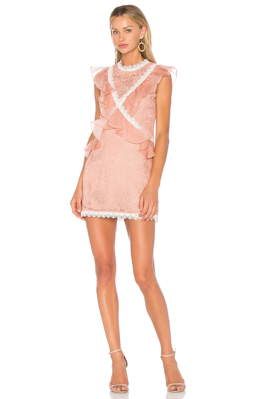 AMUR Phoebe Dress in Nude