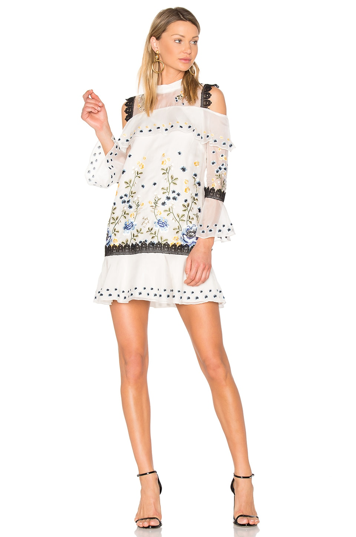 Allison Dress by Amur