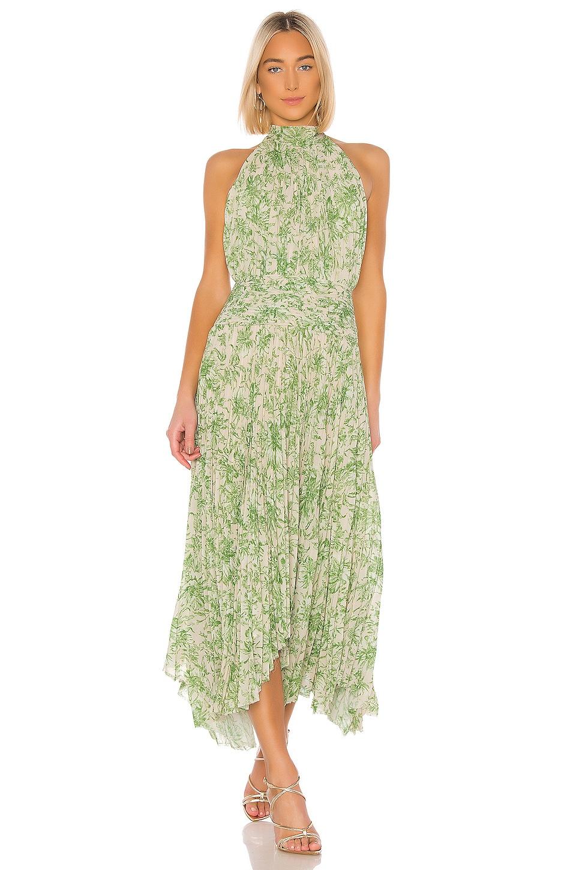 AMUR Bibi Dress in Ecru & Green