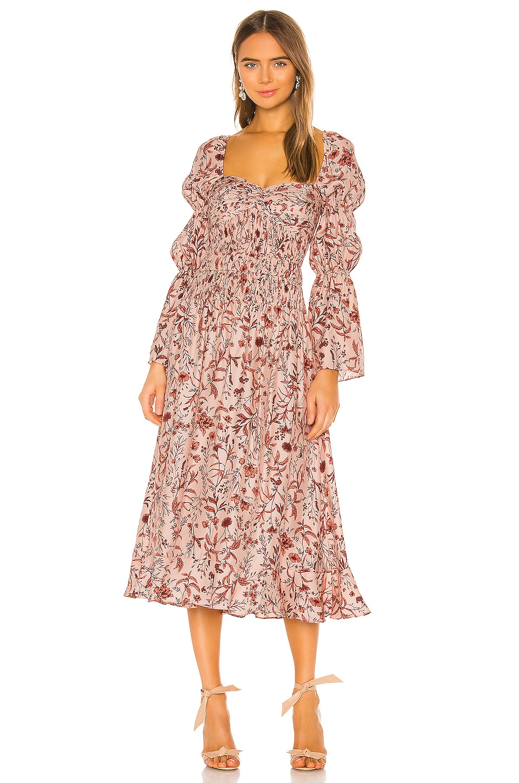 AMUR Filipa Dress in Blush Wildflowers