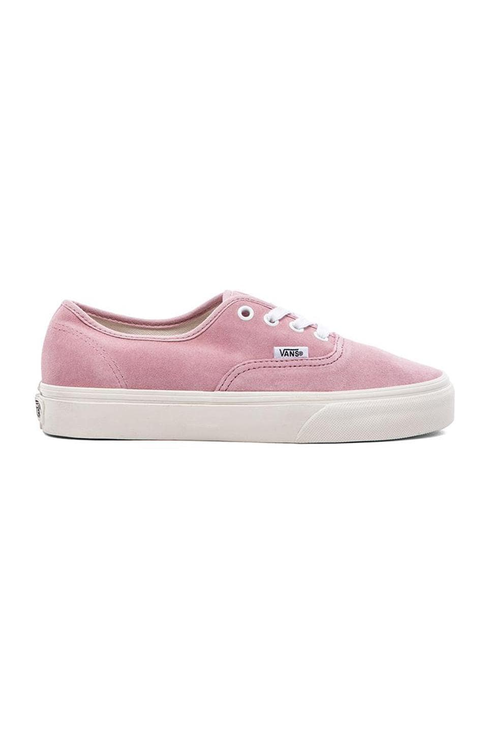 Vans Authentic Sneaker in Prism Pink