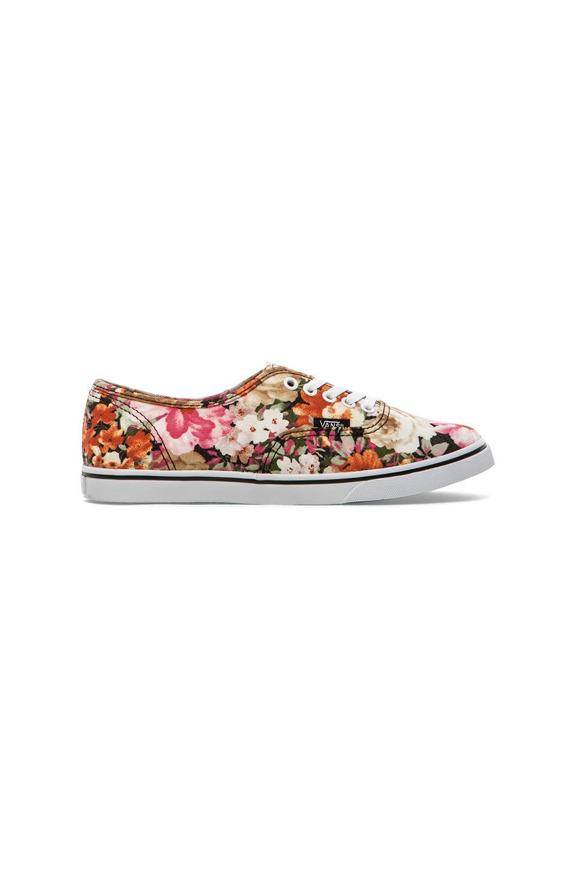 Vans Authentic Lo Pro Sneaker in Coriander Floral