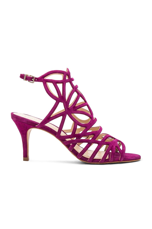 Pelena Heel by Vince Camuto