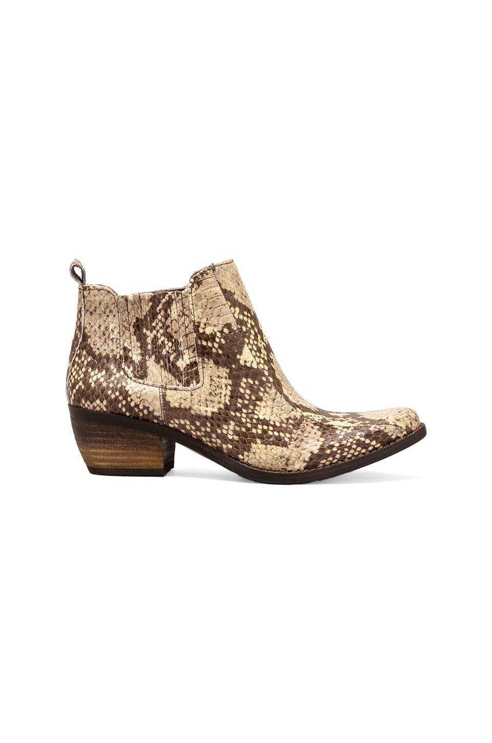 Vince Camuto Corral Bootie in Neutral Snake