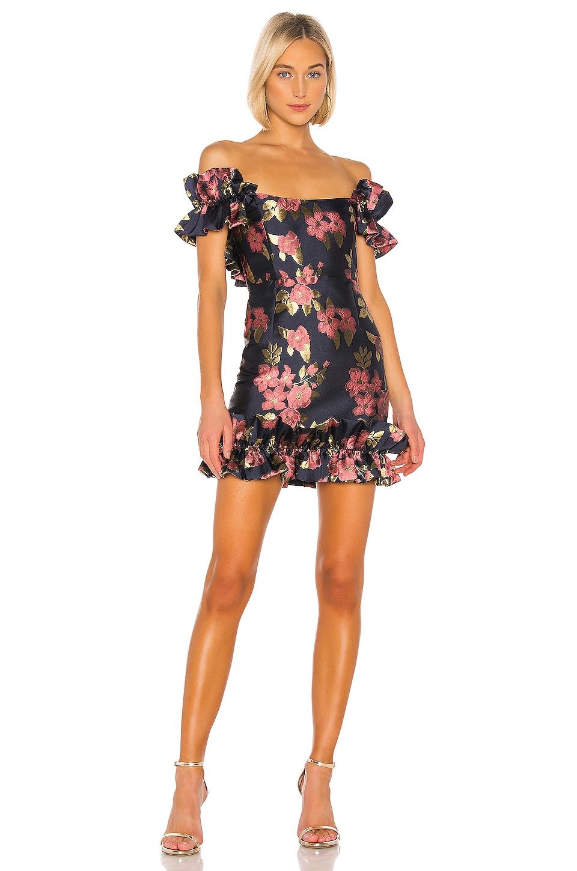 V. Chapman Hollyhock Dress in Baroque Rose