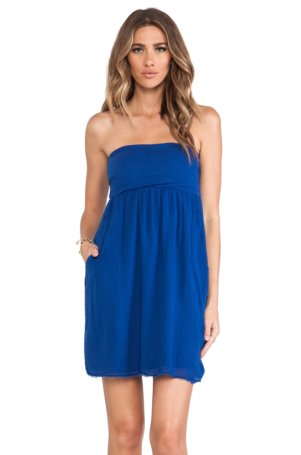 Velvet by Graham & Spencer Hayzelle Sheer Jersey Dress in Blueberry