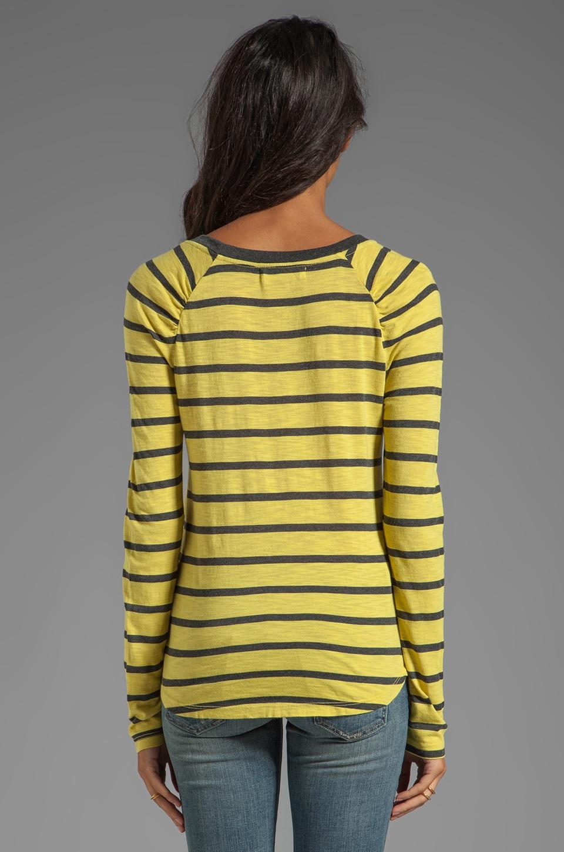 Velvet by Graham & Spencer Verna Charcoal Slub Stripe Long Sleeve in Sunbeam