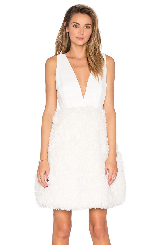 Tobi Faux Fur Skirt Dress