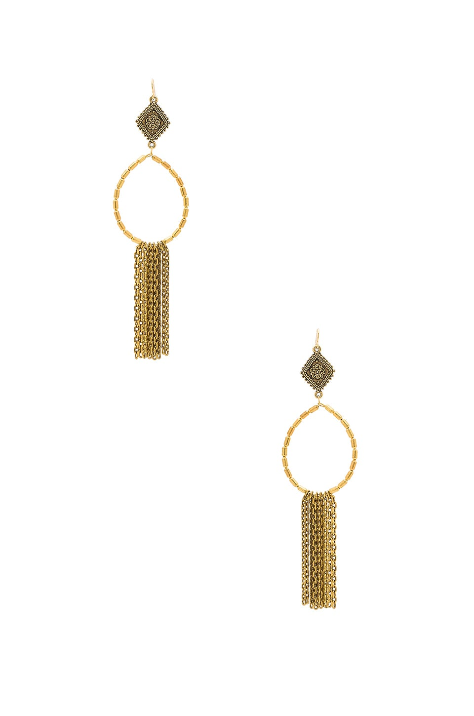 Vanessa Mooney Hailey Hoop Earrings in Gold
