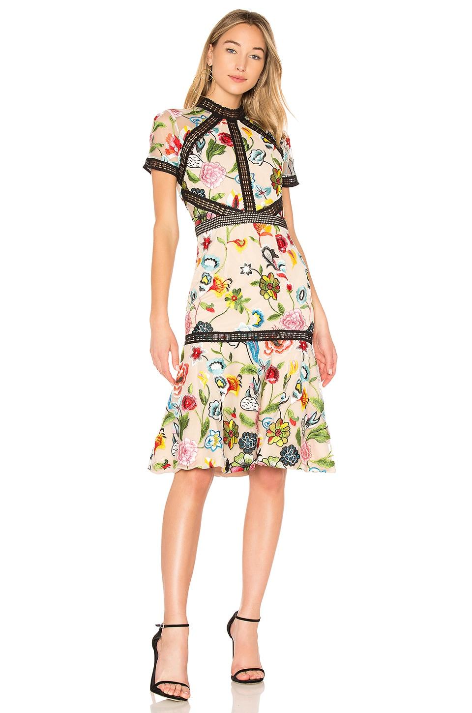 VONE Caterina Dress in Cream