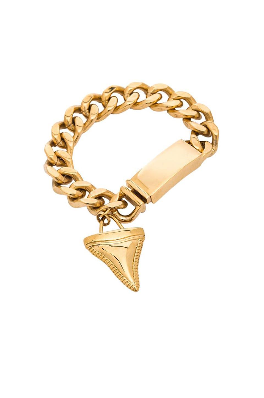 Wanderlust + Co Shark tooth ID Bracelet in Gold