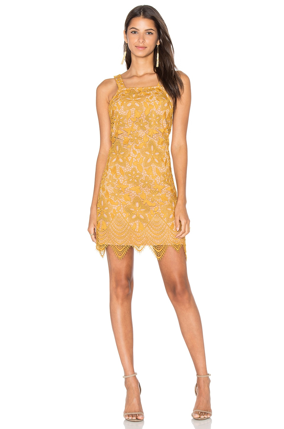 Orleans Lace Mini Dress by WAYF