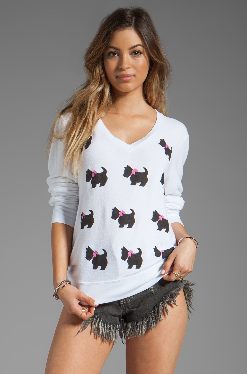 Wildfox Couture Doggie V-neck Pullover in Clean White