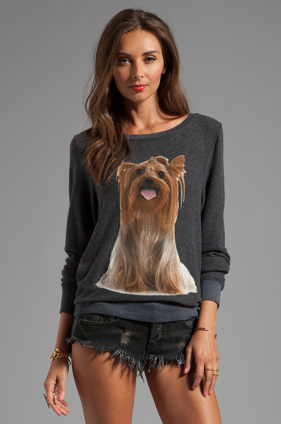 Wildfox Couture Granny's Dog Baggy Beach Jersey in Dirty Black