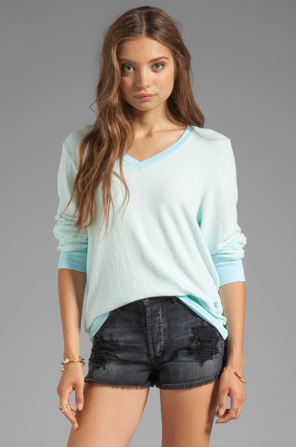 Wildfox Couture Baggy Beach Long Sleeve V-Neck in Mall Fountain