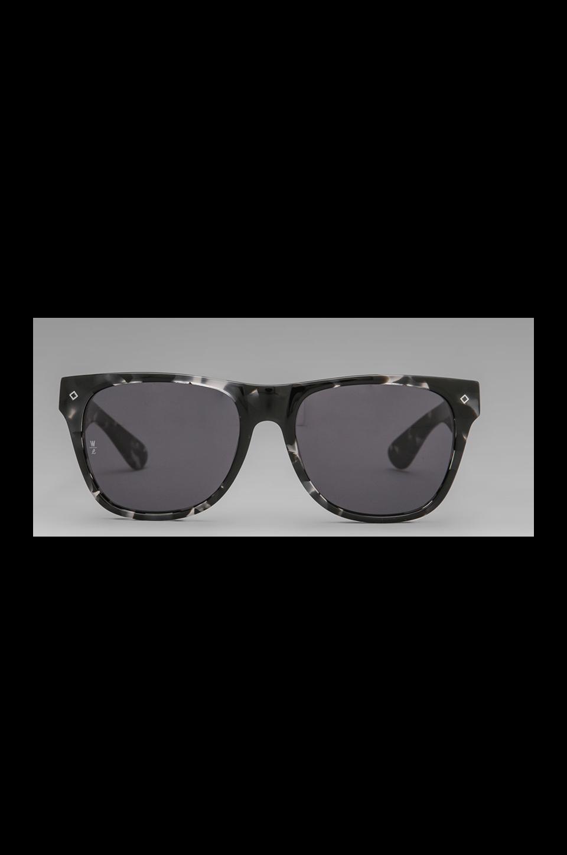 Wonderland Havasu in Black Tort/Gloss Black/Grey